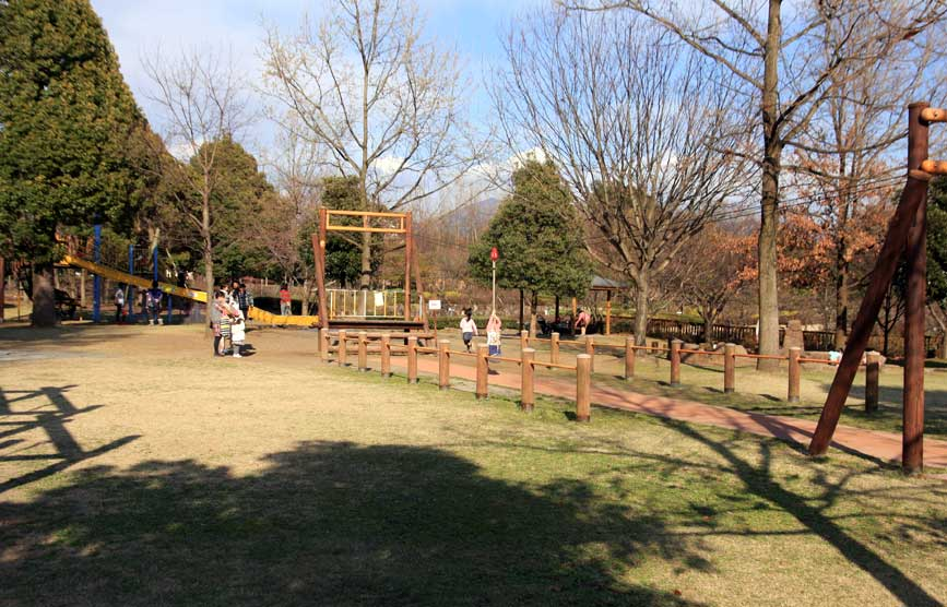 西 公園 富士