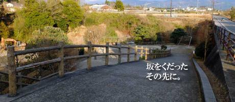 mizusawa_catch