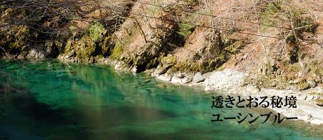 yushin_catch