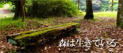 原生の森公園