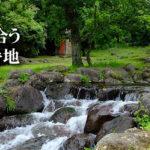 水と緑の杜公園(上のほう)