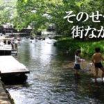 源兵衛川親水公園